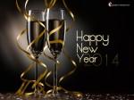 Happy-New-Yeay2014